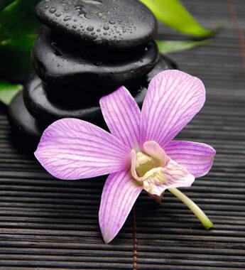Zen Stones and Flower - plakat